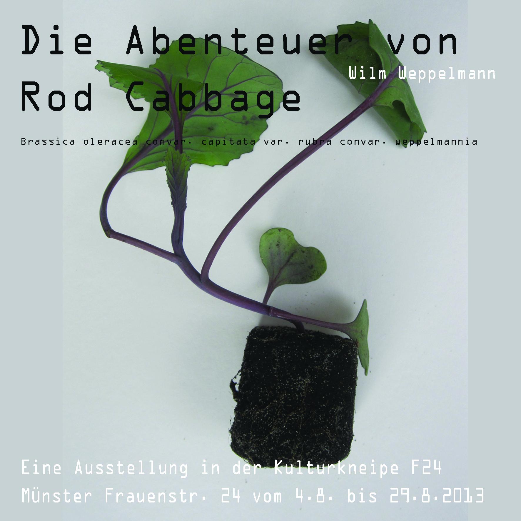 """Archiv 2013: """"Die Abenteuer von Rob Cabbage II""""   Ausstellung"""