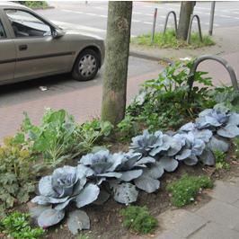 Archiv 2009: Guerilla Gardening